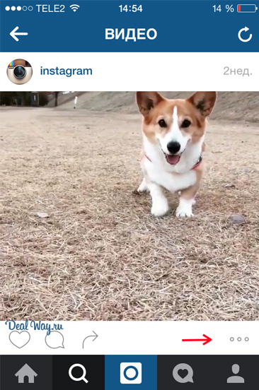 ссылка на видео в Instagram