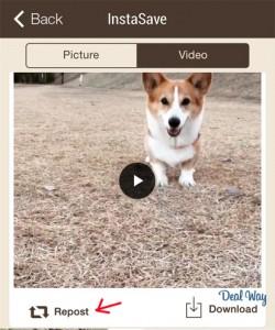 репост видео в Инстаграм